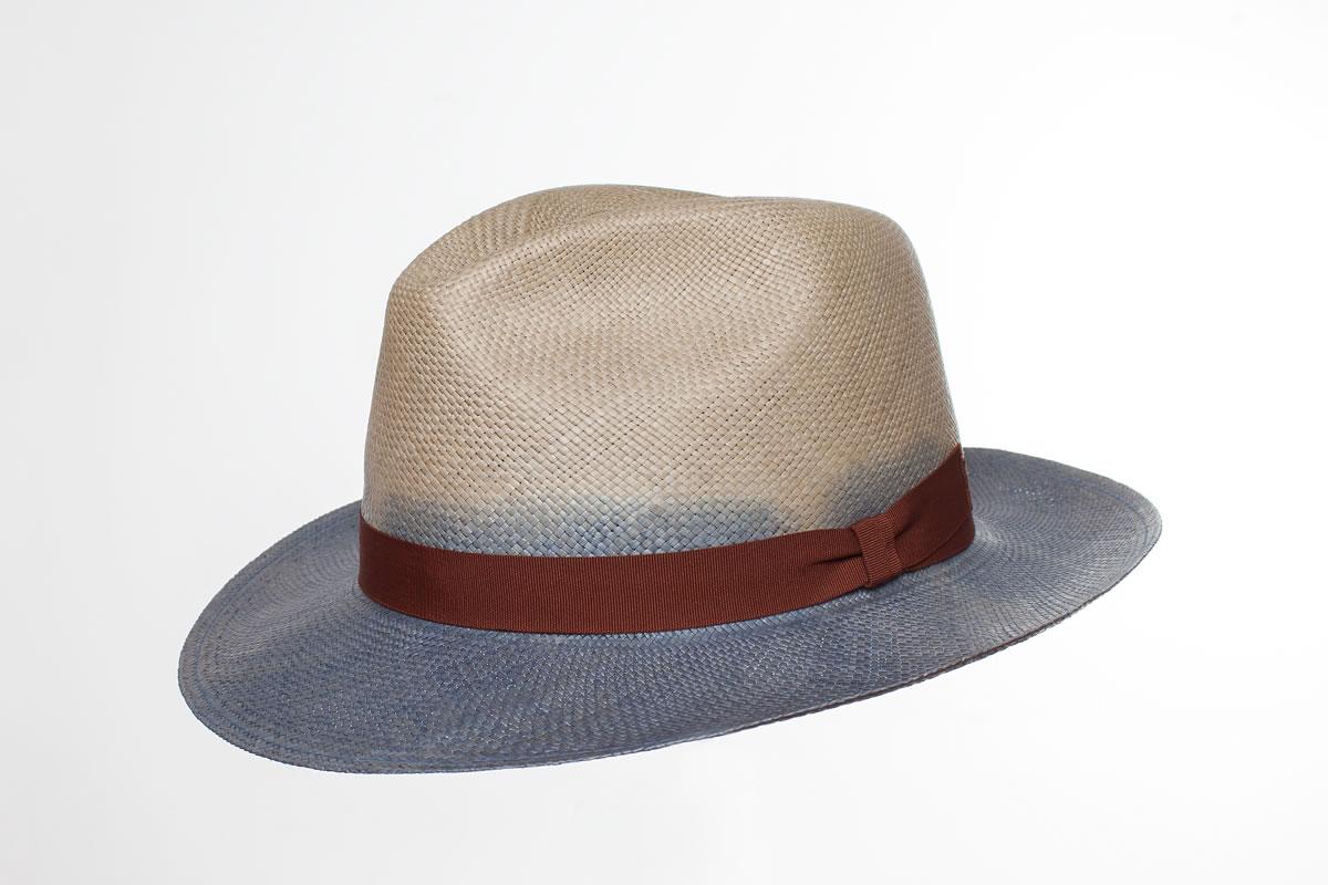 Panama Hat Martin